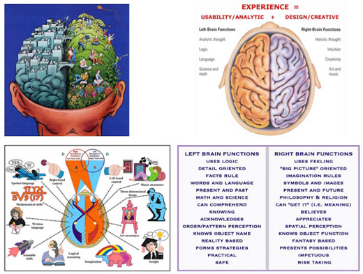 Thinking and Learning - Understanding Brain Quadrants