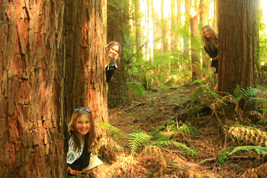Students explore the magical forest on their Rest Day