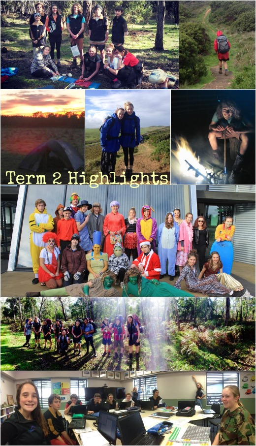 Term 2 Highlights