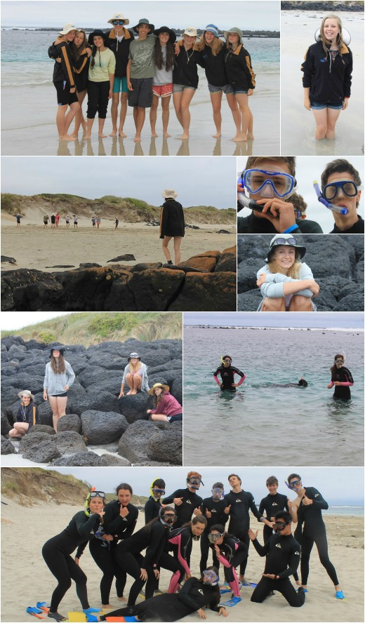Term 4 - Exploring the Beach